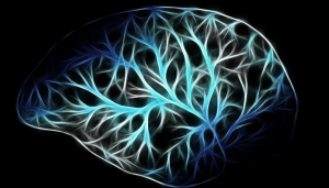 Animation of brain used as a representation for the treatment of seizures